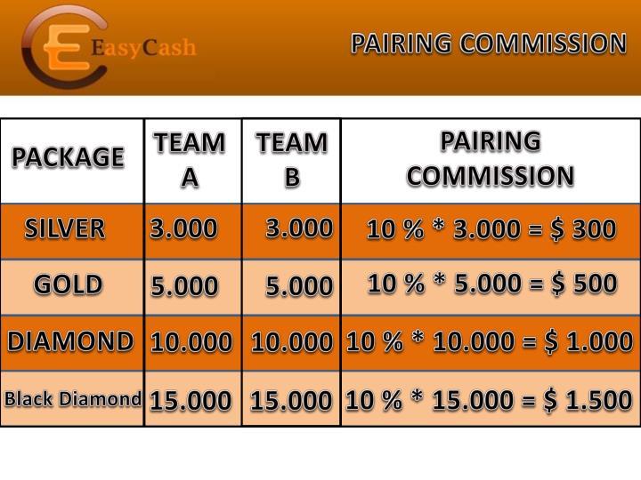 PAIRING COMMISSION