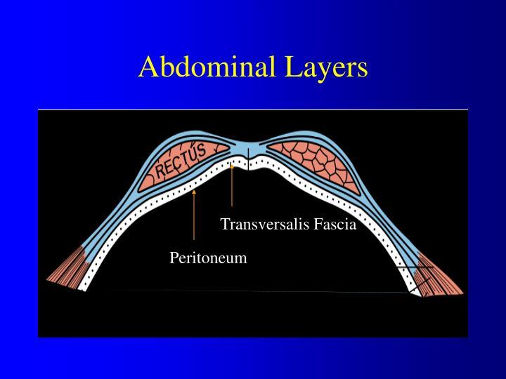 Abdominal Layers
