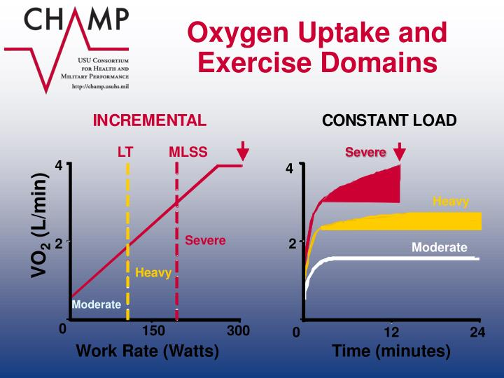 Oxygen Uptake and