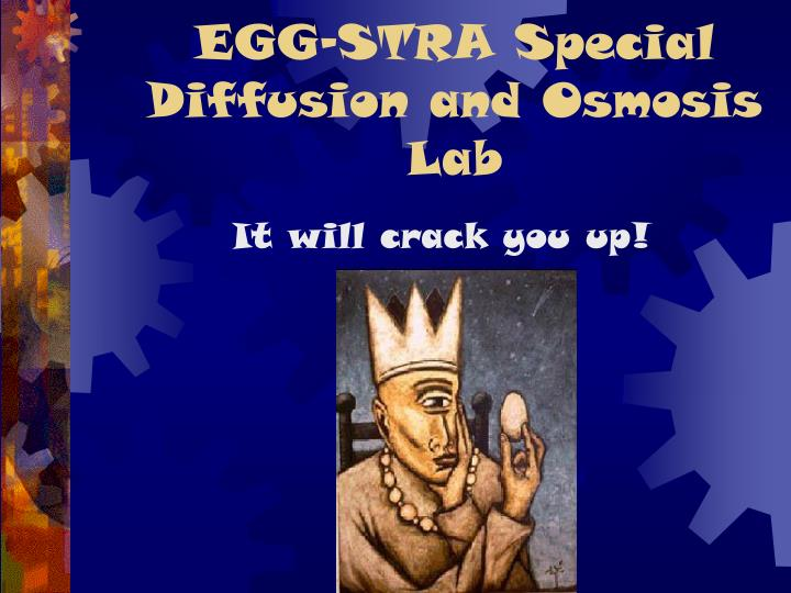 egg stra special diffusion and osmosis lab n.