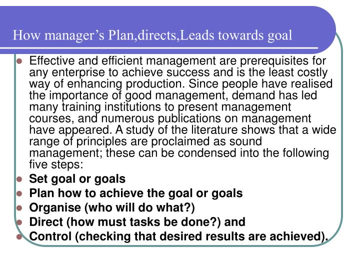 How manager s plan directs leads towards goal