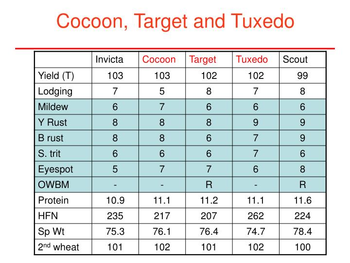 Cocoon, Target and Tuxedo