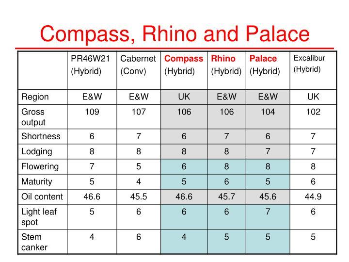 Compass, Rhino and Palace