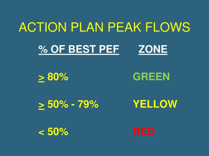 ACTION PLAN PEAK FLOWS