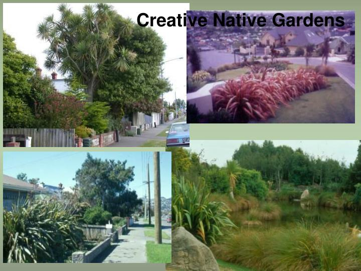 Creative Native Gardens