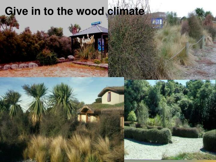 Give in to the wood climate