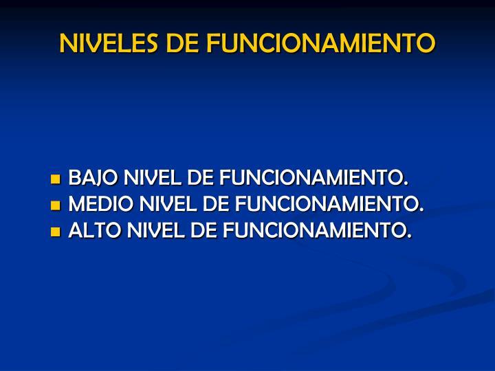 BAJO NIVEL DE FUNCIONAMIENTO.