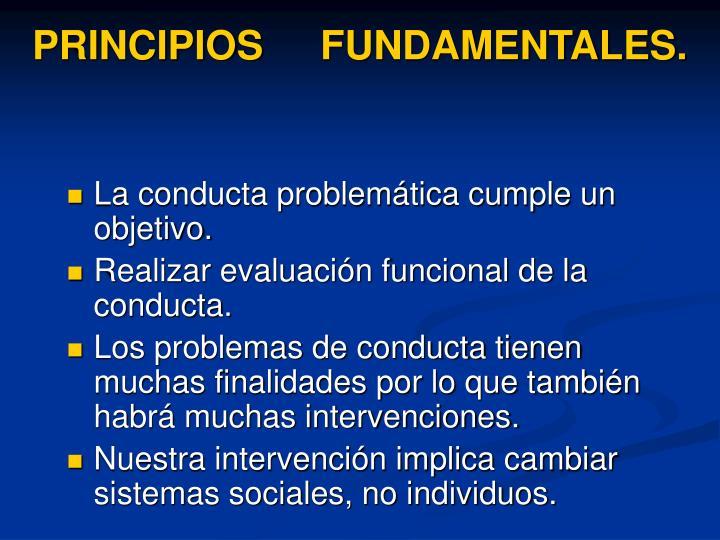 PRINCIPIOS FUNDAMENTALES.