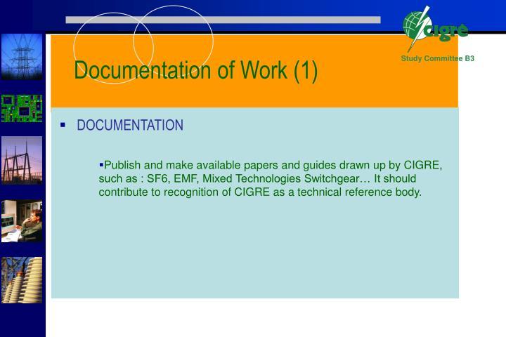 Documentation of Work (1)