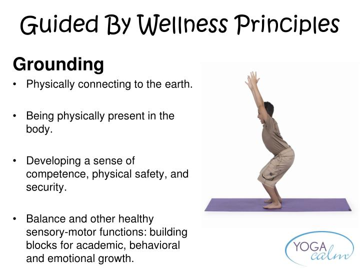 Guided By Wellness Principles