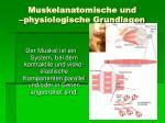 muskelanatomische und physiologische grundlagen