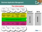 business application management