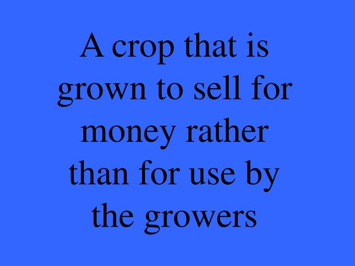 A crop that is grown to sell for money rather than for use by the growers
