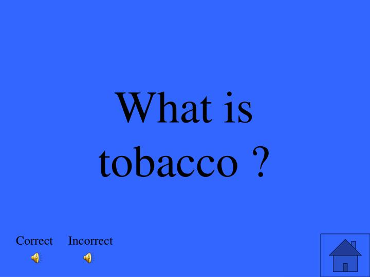 What is tobacco ?