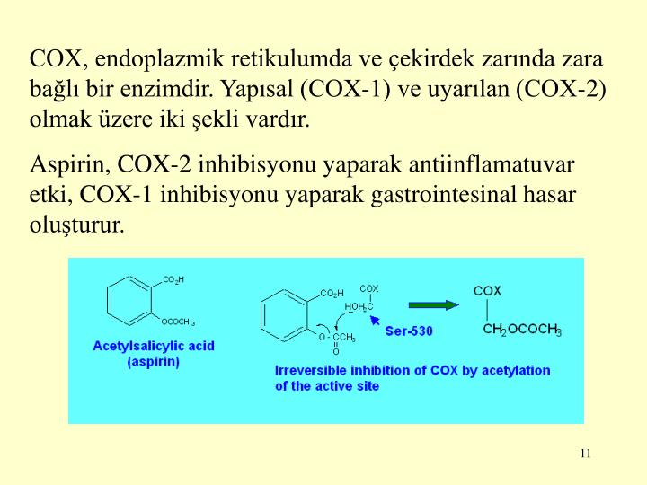 COX, endoplazmik retikulumda ve çekirdek zarında zara bağlı bir enzimdir. Yapısal (COX-1) ve uyarılan (COX-2) olmak üzere iki şekli vardır.