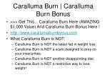 caralluma burn caralluma burn bonus3