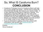 so what is caralluma burn conclusion
