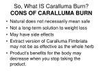 so what is caralluma burn cons of caralluma burn