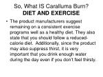 so what is caralluma burn diet and exercise