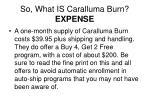 so what is caralluma burn expense