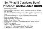 so what is caralluma burn pros of caralluma burn