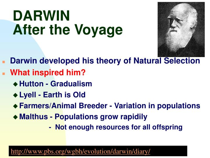 natural selection spurs evolution in relation to darwins theories 5 principles of natural selectionpptx 5 principles of natural selection principle example variations i can identify the 5 points of darwin's theory of evolution.