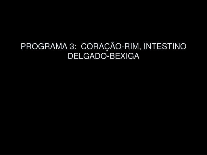 PROGRAMA 3:  CORAÇÃO-RIM, INTESTINO DELGADO-BEXIGA