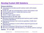 develop custom gis solutions