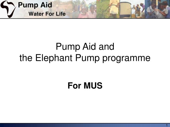 pump aid and the elephant pump programme n.