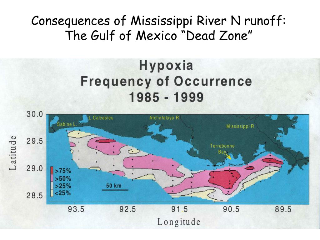 Consequences of Mississippi River N runoff: