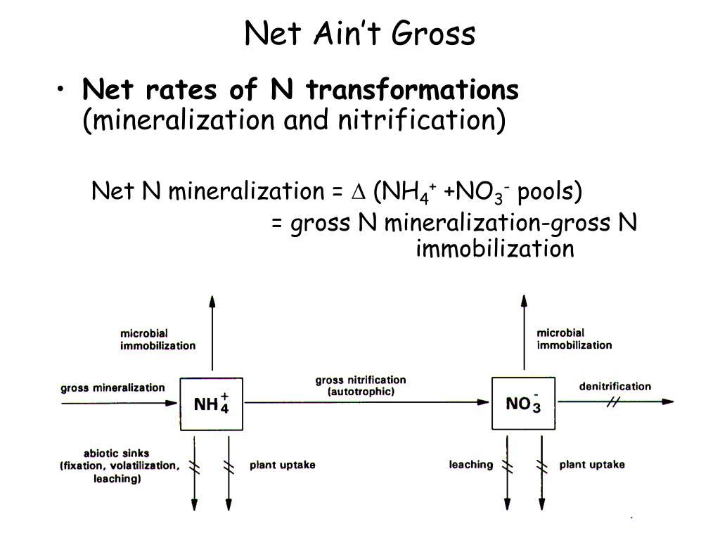 Net Ain't Gross