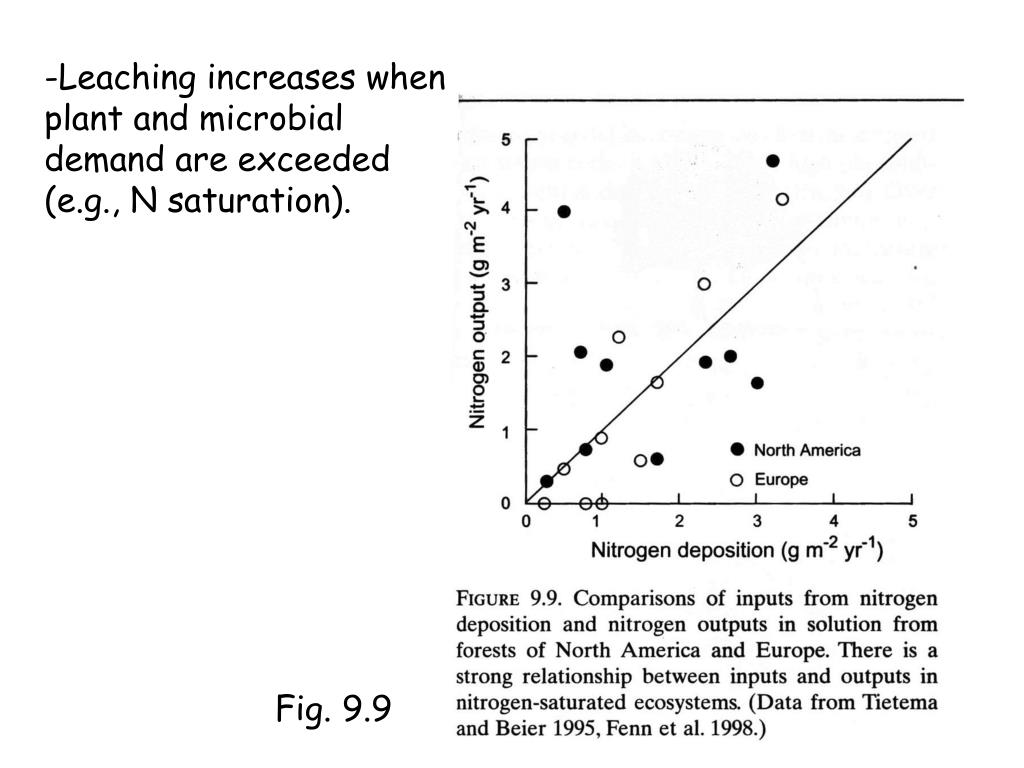 Leaching increases when plant and microbial demand are exceeded (e.g., N saturation).