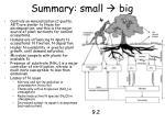 summary small big