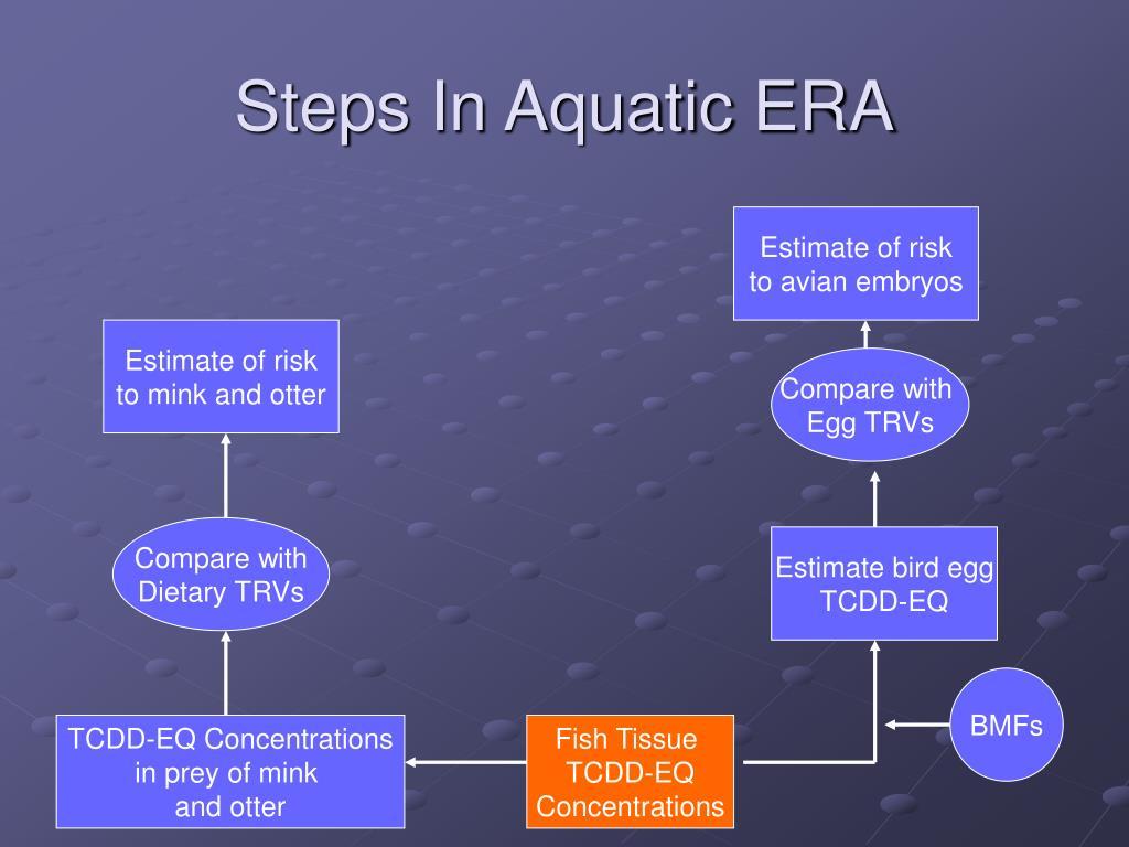 Steps In Aquatic ERA