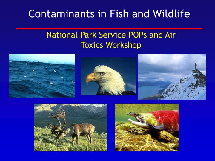 National park service pops and air toxics workshop