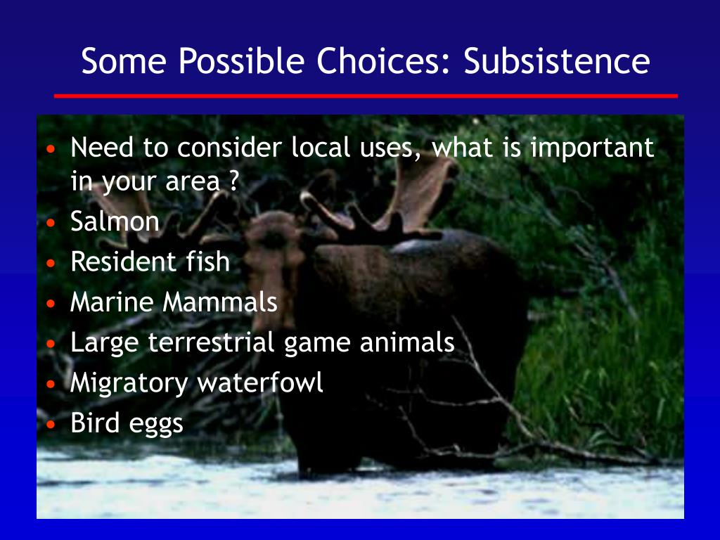 Some Possible Choices: Subsistence