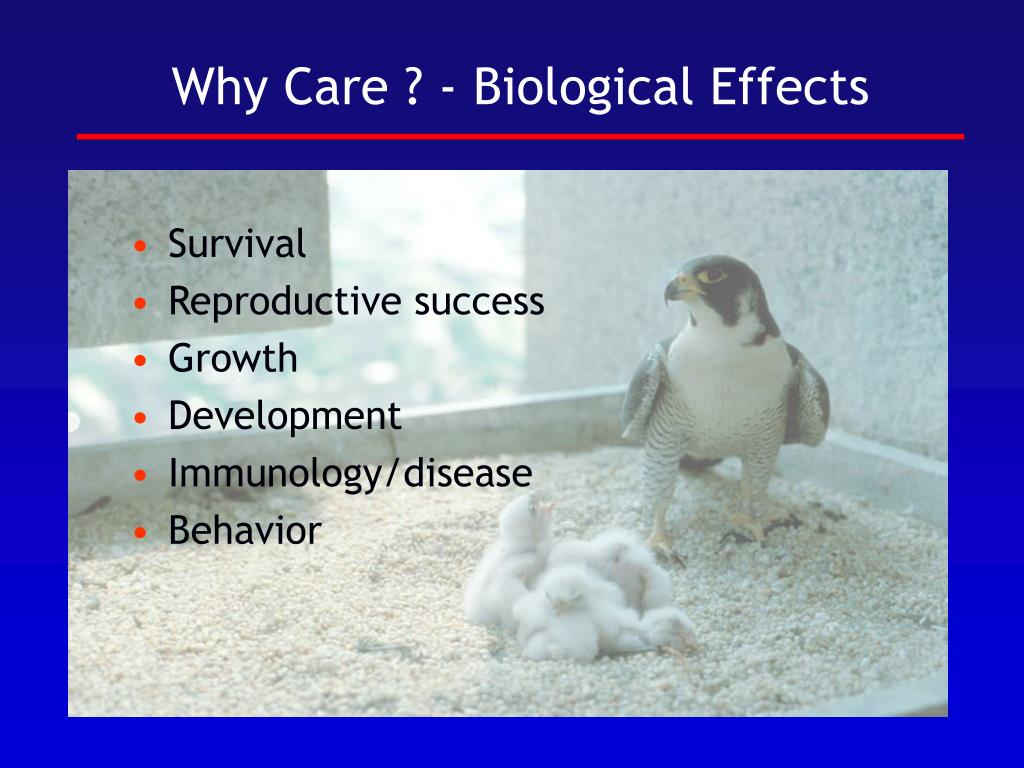 Why Care ? - Biological Effects
