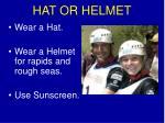 hat or helmet