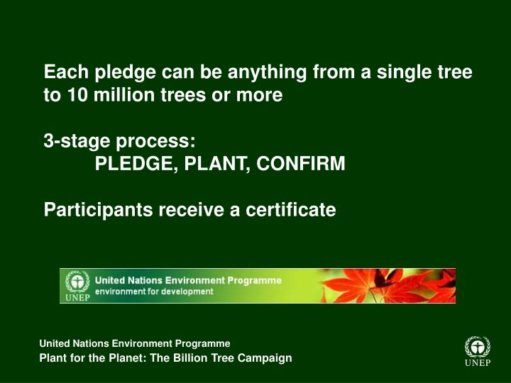 Each pledge can be anything from a single tree to 10 million trees or more