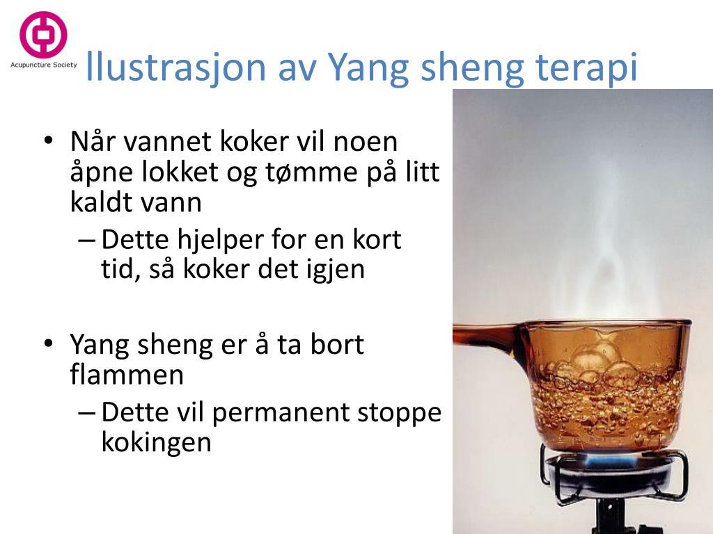 Illustrasjon av Yang sheng terapi