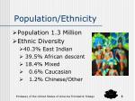 population ethnicity