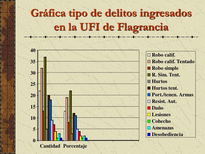Gráfica tipo de delitos ingresados en la UFI de Flagrancia