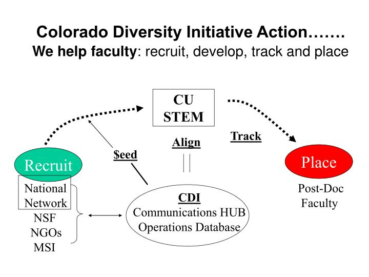 Colorado Diversity Initiative Action…….