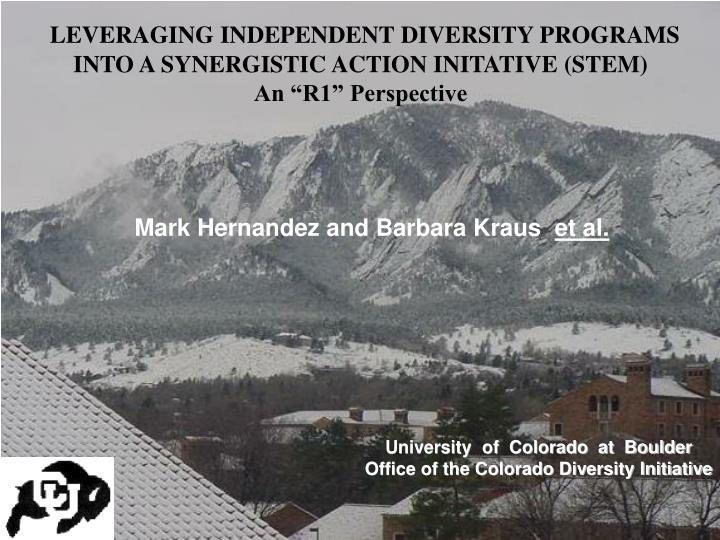 LEVERAGING INDEPENDENT DIVERSITY PROGRAMS
