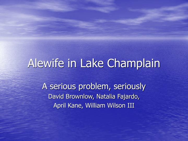 Alewife in lake champlain
