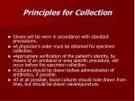 principles for collection
