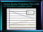 census bureau projections thru 2100 u s race ethnic composition percent