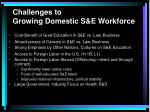 challenges to growing domestic s e workforce38