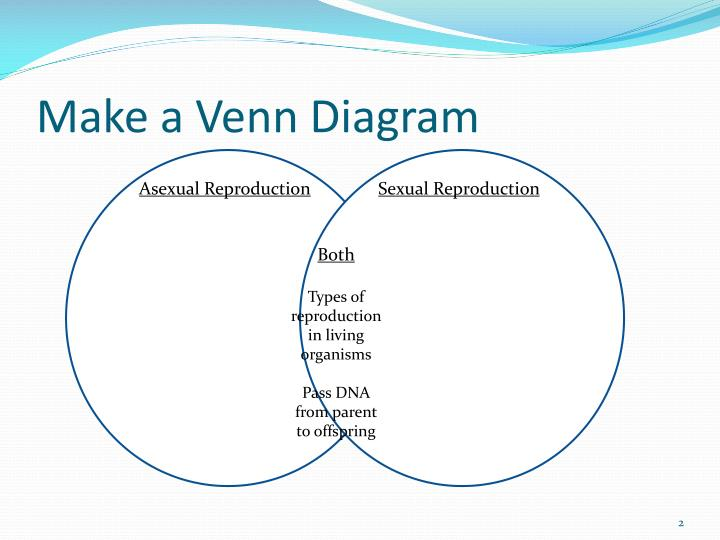 ppt - asexual vs  sexual reproduction powerpoint presentation