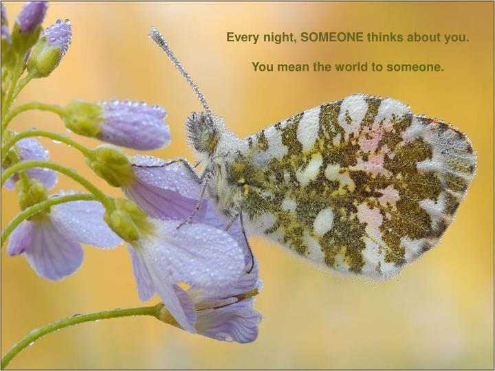 Every night, SOMEONE thinks about you.
